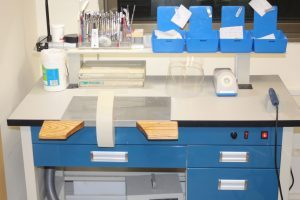 עמדת מעבדה לבניית קיבועים לשמירת מצב ולהכנת תזוזות לטיפולי יישור שיניים שקוף.